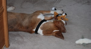 Snuggling with one of his stuffies