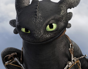 Toothless, (a Night Fury Dragon)