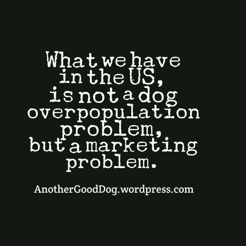 marketing problem.jpg