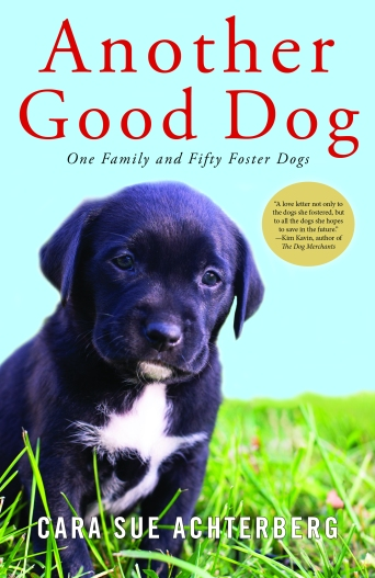 Another Good Dog cover