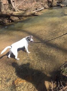 Playing in Deer Creek