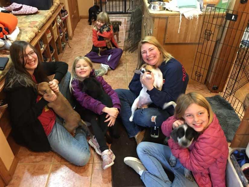puppy visitors